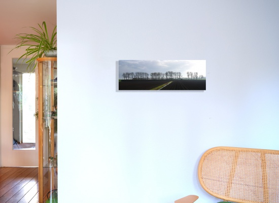 Autumn in the Beemster Polder (80 x 28 cm) glued on Dibond